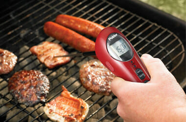 Polder BBQ Thermometer Review