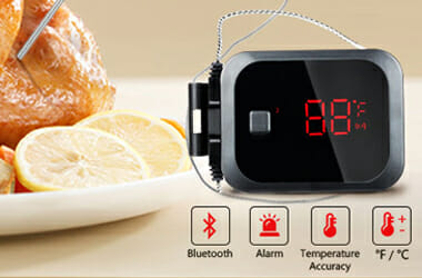 Inkbird IBT-2X BBQ Thermometer Review